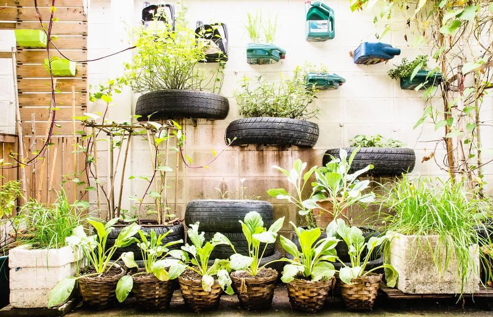Cómo hacer un Huerto Urbano en la Terraza de Casa