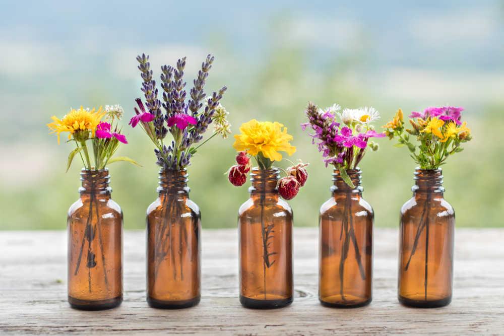 ¿Qué plantas naturales podemos incluir en un botiquín para controlar el peso?
