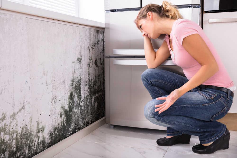 Consejos para combatir la humedad en casa